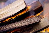 Hermoso fondo de quema de troncos — Foto de Stock