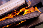 The fire, burning logs close up — Stock Photo