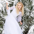 Stock Photo: Bride in forest in winter