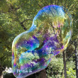 Soap bubble — Stock Photo