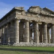Paestum ruins — Stock Photo #34810575
