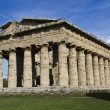 Paestum ruins — Stock Photo