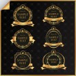 Vintage vector set of black frame label with gold elements - Stock Vector