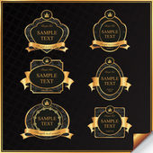 Vintage vector set of black frame label with gold elements — Vector de stock
