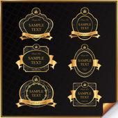 Vintage vector set of black frame label with gold elements — Stock Vector