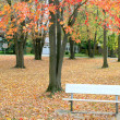 Aluminum bench in the park during autumn — Stock Photo