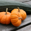 Large zucchini and miniature pumpkins — Stock Photo