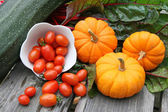 Harvest of autumn vegetables — Stock Photo