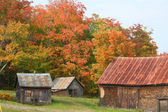Autumn in Maine countryside — Stock Photo