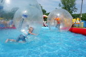 Boys riding in a zorb balls. — Stock Photo