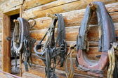 Horse collars. — Stock Photo