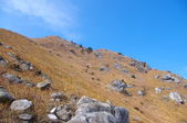 Mountaintop and rocks — Stock Photo