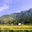 Stock Photo: Beautiful farmland at china