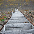 Long wooden ladder — Stock Photo