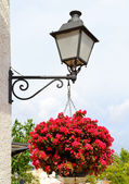 Old lantern with hanging flowers — Stock Photo