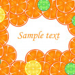 Slices of orange,lemon, lime on a white background with a space for your text — Stock Vector