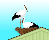 Two white storks — Vector de stock