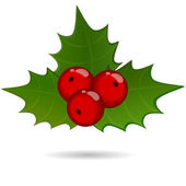 Holly berry sprig, christmas symbol — 图库矢量图片