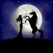 Silhouette of beautiful girl and unicorn on a background of the night sky — Stock Vector