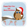 Owl on branch and candy-cane - card with congratulation — Stock Vector
