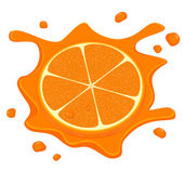 Vector illustration of fresh orange — Stock Vector