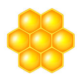 Honeycomb, isolated on the white — Stock Vector