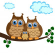 Family of owls sat on a tree branch — Stock Vector