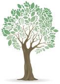 Tree ornamental vector — Stock Vector
