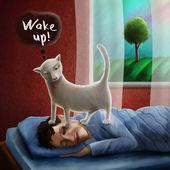 Cat wakening sleeping man in the morning — Stock Photo