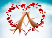 Valentine card. Cats with hearts in the sky — Stock Photo