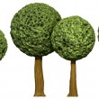Ball shaped trees, 3d based — Stock Photo #26181179