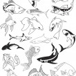 Royalty-Free Stock Vector Image: Fish & Fish