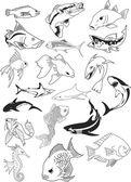 Fish & Fish — Vetorial Stock