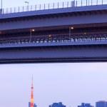 Tokyo tower — Stock Photo #15389569