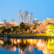 Stock Photo: Hamarikyu Gardens