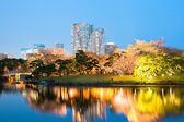Hamarikyu Gardens — Stock Photo