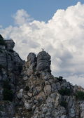 Monument seagull on a high cliff in the Black Sea in Yalta, Crimea, Ukraine — Stockfoto
