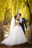 Young wedding couple — Foto Stock