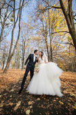 Newly married couple posing in autumn park — Stock Photo