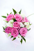 Pink roses bouquet isolated — Stock fotografie