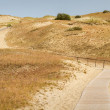 Road to Dune Nagliu, Curonian Spit, Lithuania — Stock Photo