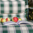 Stock Photo: Book and apple at their summer chair