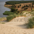 View from the Dune Nagliu, Curonian Spit, Lithuania — Stock Photo