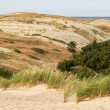 View from the Dune Nagliu, Curonian Spit, Lithuania — Stock Photo #30515559