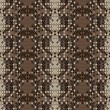 Snake skin reptile seamless pattern, vector  illustration. - Stock Photo