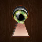 Interested Eye looking in keyhole, vector Eps10 illustration. — Stock Vector