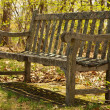 An old neglected garden bench — Stock Photo