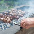 Stock Photo: Mfries shish kebab