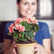 Woman arranging flowers — Stockfoto