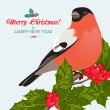Christmas background and greeting card with bullfinch and holly — Vettoriale Stock